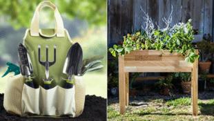 Your Own Herb Garden Is Only a Gardening Kit + Cedar Planter Away