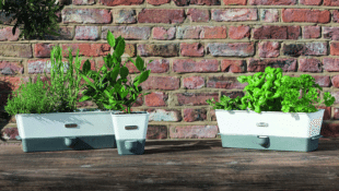 No Green Thumb? This Self-Watering Indoor Herb Planter Was Made for You