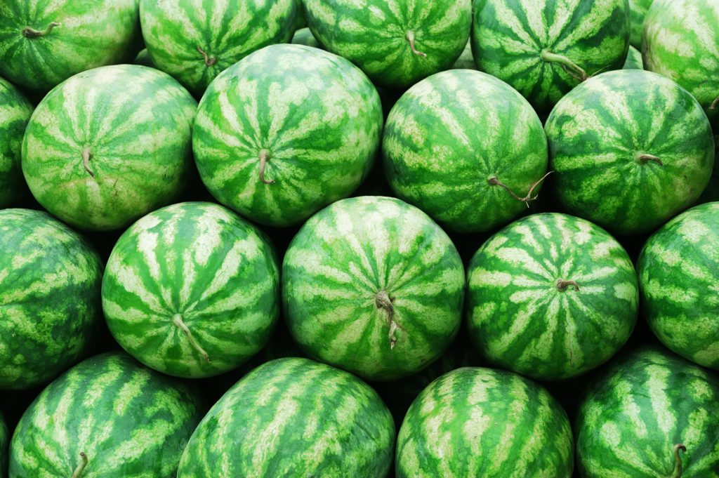 watermelon-facts