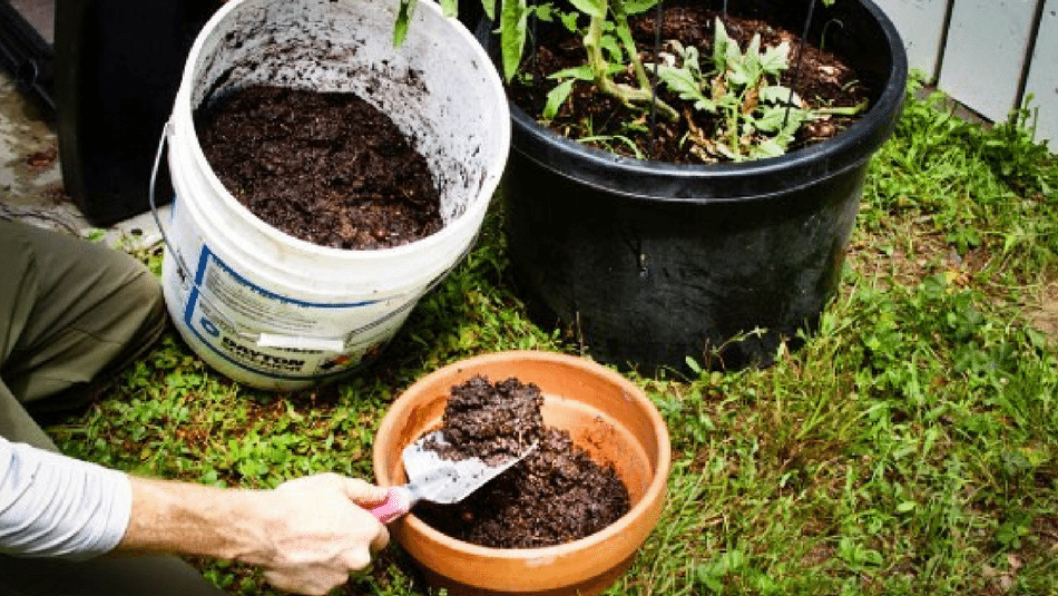 home-composting-how-to-compost-at-home