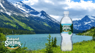 Is Poland Spring Simply Ground Water?