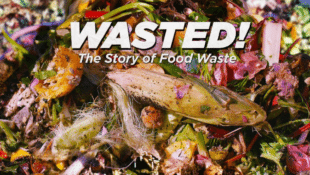 Anthony Bourdain Tackles Food Waste in New Documentary Wasted!