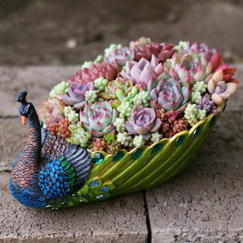 Handmade Peacock Succulent Planter
