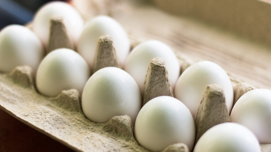 how to tell if eggs are fresh