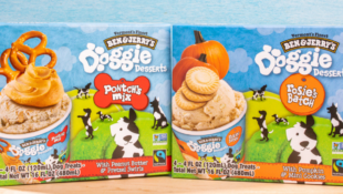 Ben & Jerry's Releases New Doggie Desserts For Your Furry Friends